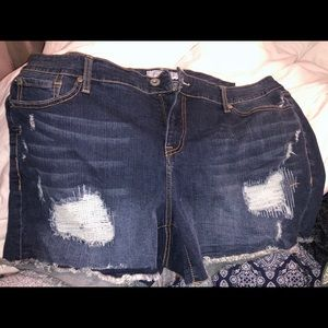 Torrid denim cut offs